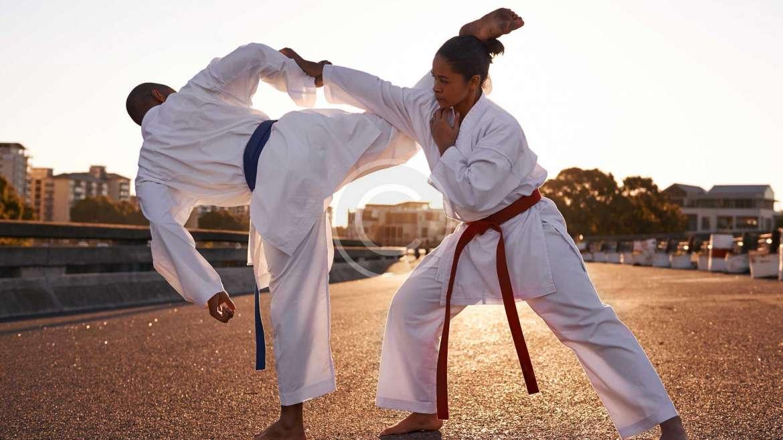 Adult Jiu-Jitsu